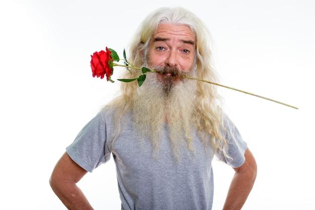 Starszy brodaty mężczyzna gryzie czerwoną różę gotowy na walentynki