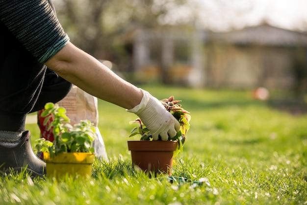 Starszy kobieta przesadzanie niektórych kwiatów do puli, koncepcja ogrodnictwa