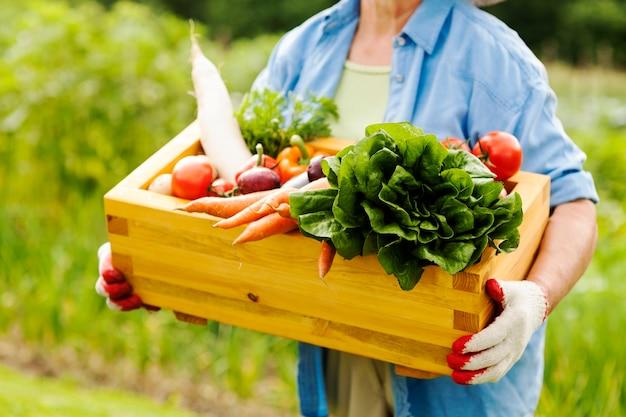 Starszy kobieta trzyma pudełko z warzywami