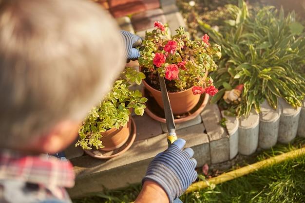Starszy kwiaciarz za pomocą kielni przestawia kwiaty w doniczkach na zewnątrz