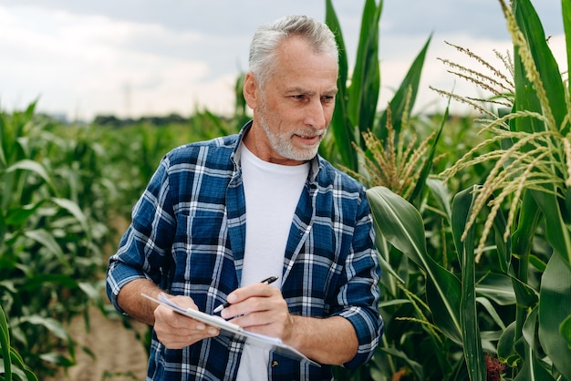 Starszy mężczyzna, agronom, obserwuje rozwój rolnictwa, robi notatki w zeszycie.