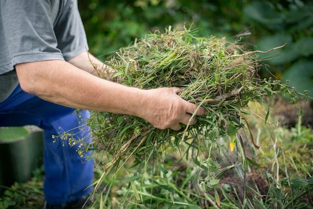 Starszy mężczyzna czyszczenia ogrodu z koncepcji chwastów, ogrodnictwo