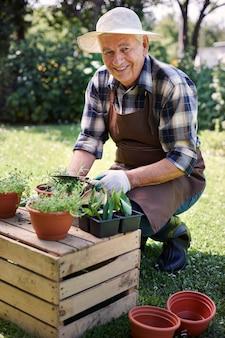 Starszy mężczyzna pracujący w polu z roślinami