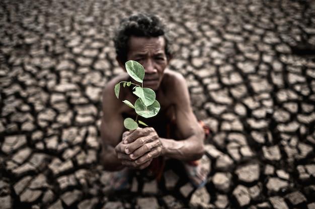 Starszy mężczyzna siedzący z suchą glebą i pęknięty w ręcznej sadzonce, globalne ocieplenie