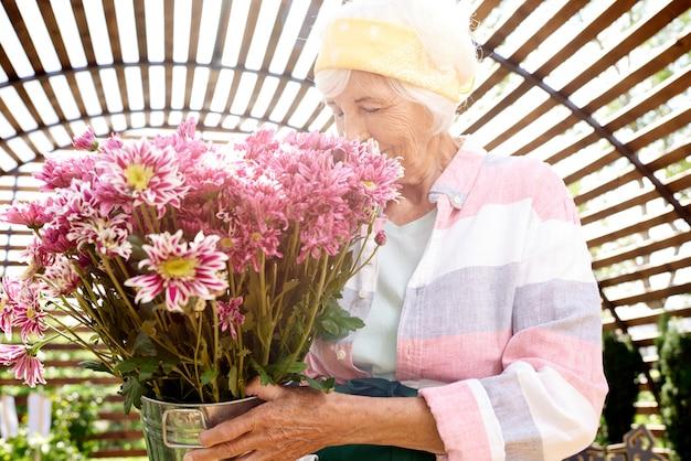 Starszy ogrodnik trzyma kwiaty