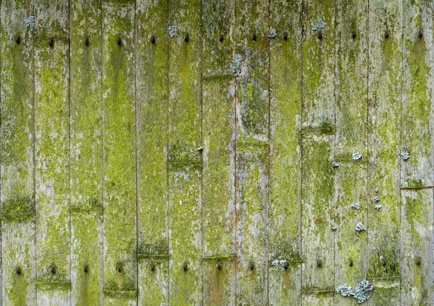 Stary bambusowy tło. ściana lub ogrodzenie wykonane ze starego bambusa. tekstura starego drewna z mchem i pleśnią