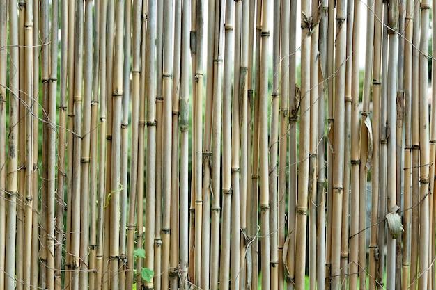Stary brązowy ton bambusowe deski ogrodzenia tekstury tła
