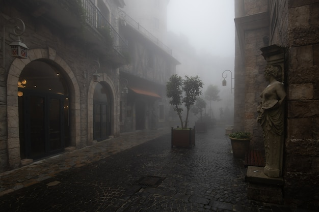 Stary budynek we wsi we mgle