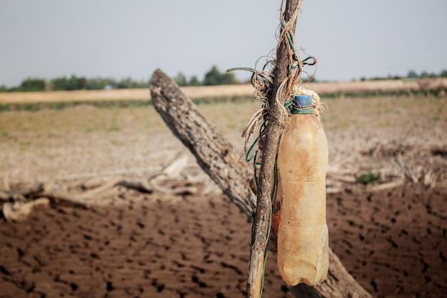 Stary butelka na drewnie.