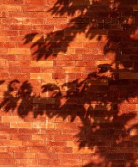 Stary ceglany mur z cieniami liści