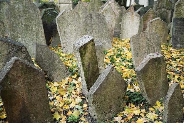 Stary cmentarz żydowski na jesienny dzień