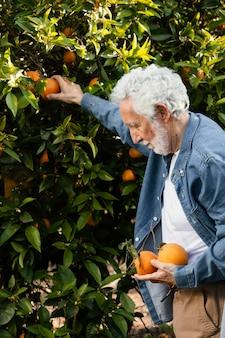 Stary człowiek stojący obok swoich drzew pomarańczowych na zewnątrz