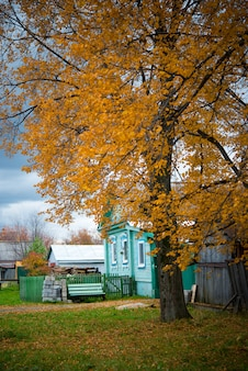 Stary drewniany dom we wsi, drzewa, krajobraz wsi jesienią