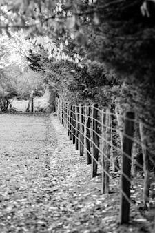 Stary Drewniany Ogrodzenie I Drut Kolczasty Wokoło łąki W Normandy Premium Zdjęcia