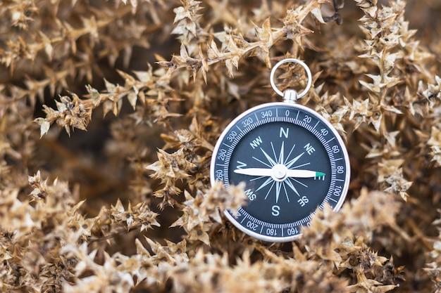 Stary kompas leżący na suchym ziołowym krzewie. sprzęt turystyczny. motyw przygodowy i odkrywczy. nawigacja w podróży. znajdź drogę i miejsce docelowe