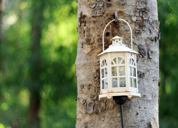 Stary lampowy obwieszenie na drzewie w ogródzie z zamazanym tłem.