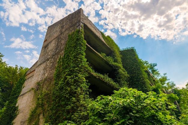 Stary niedokończony kamienny budynek porośnięty roślinami. zdjęcie wysokiej jakości