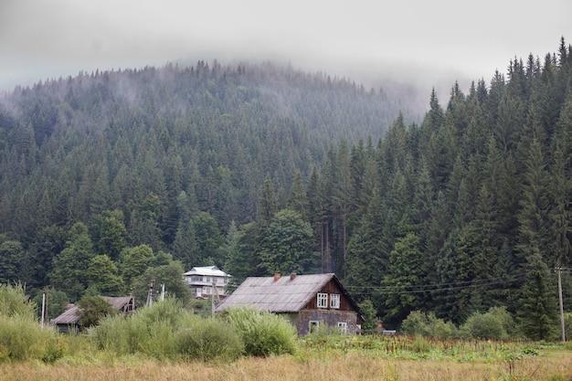 Stary opuszczony drewniany dom wiejski otoczony zielonym lasem w karpatach burkut