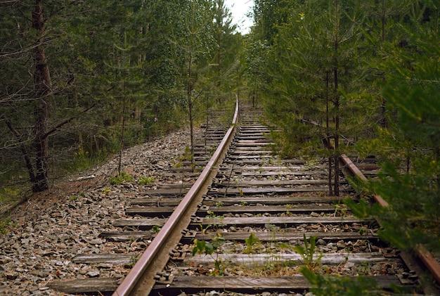 Stary opuszczony tor kolejowy nieużywana linia kolejowa biegnąca przez piękny las region leningradzki