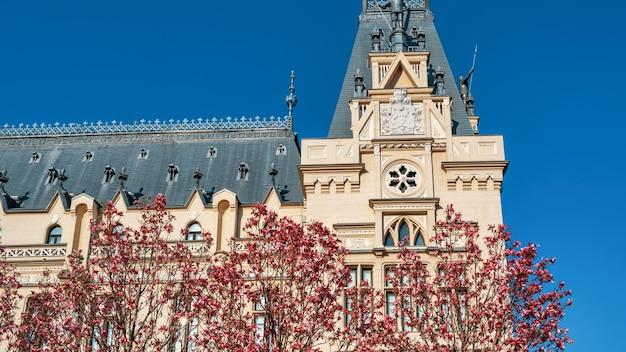Stary Pałac Wykonany W Klasycznym Stylu Europejskim. Drzewa Z Różowymi Kwiatami Na Pierwszym Planie Premium Zdjęcia
