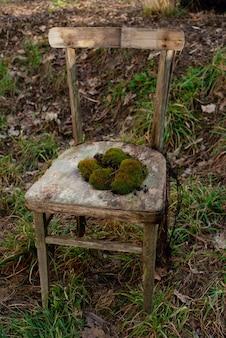 Stary przegniły osamotniony krzesło z zielonym mech w ogródzie na trawie. wiejski rocznik.