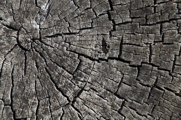 Stary tekstura drewna