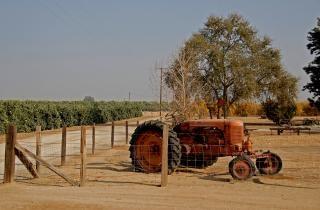 Stary traktor, niebieski