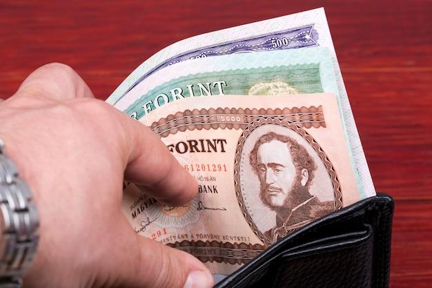 Stary węgierski forint w czarnym portfelu
