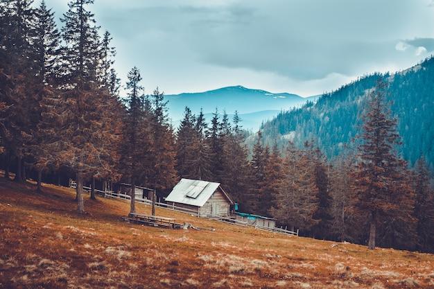 Stary wiejski dom w karpackich górach