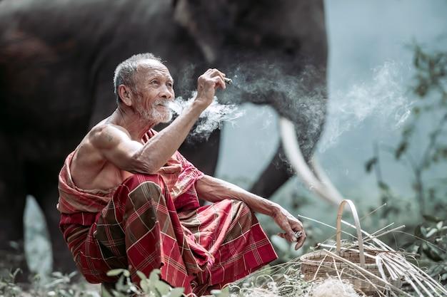 Starzec siedzi szczęśliwie i pali. podczas wychowywania słoni w lesie na obszarach wiejskich w tajlandii