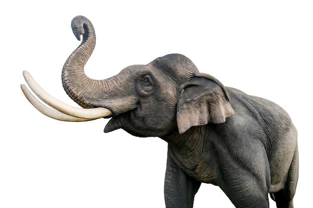 Statua słonia tajlandia na białym tle. plik zawiera ścieżkę przycinającą, dzięki czemu jest łatwa w obróbce.