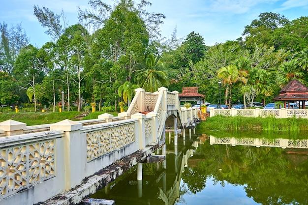 Staw w zielonym parku na tropikalnej wyspie. piękna sceneria przyrody, miejsce na odpoczynek.