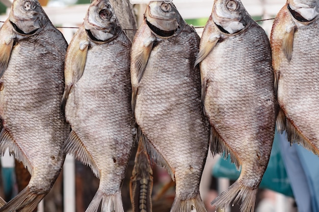 Sterta solonych suszonych ryb na sznurku na rynku. tradycyjne rosyjskie jedzenie. selektywne skupienie