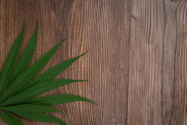 Sterty Liści Marihuany. Darmowe Zdjęcia