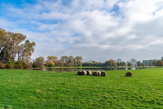 Sterty słomy na polu jesienią.