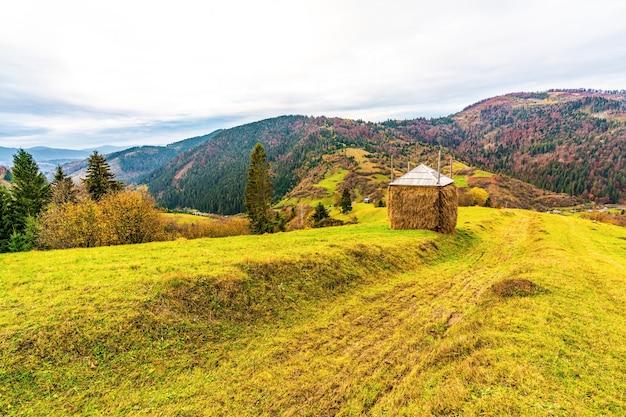 Stóg siana na zielonej łące przy niezbyt dobrej pogodzie