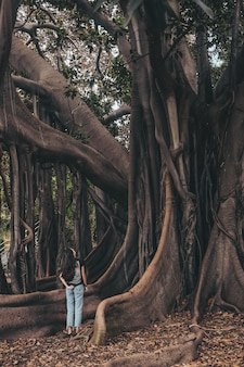 Stojąca kobieta obserwując drzewo w ciągu dnia