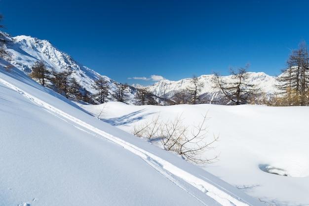 Stok narciarski w łuku alpejskim