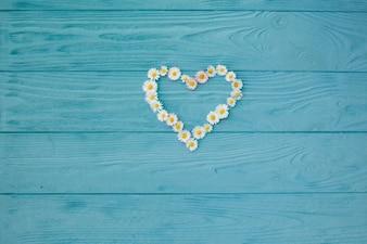 Stokrotka kwitnie w kierowym kształcie na błękit malującej drewnianej desce