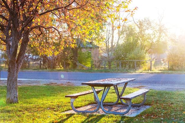 Stół piknikowy na trawie
