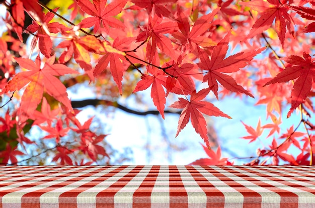 Stół piknikowy z japońskim ogrodem z drzewa klonowego jesienią.