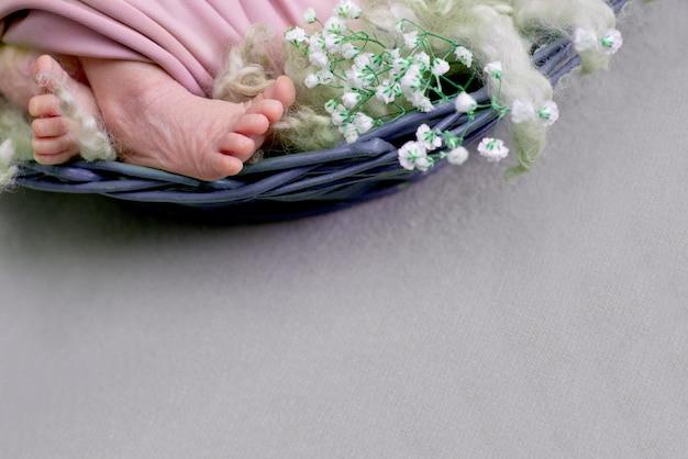 Stopy noworodka z białym kwiatkiem, dzień matki. nowonarodzona dziewczynka