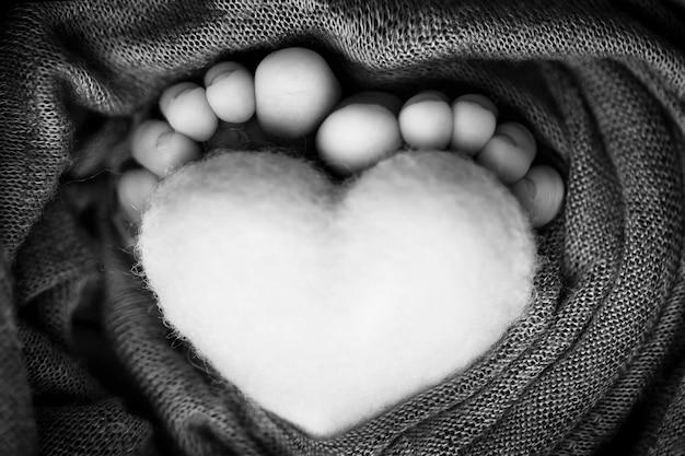 Stopy noworodka z wełnianym serduszkiem, owinięte w miękki kocyk. czarno-biała fotografia studyjna. zdjęcie wysokiej jakości