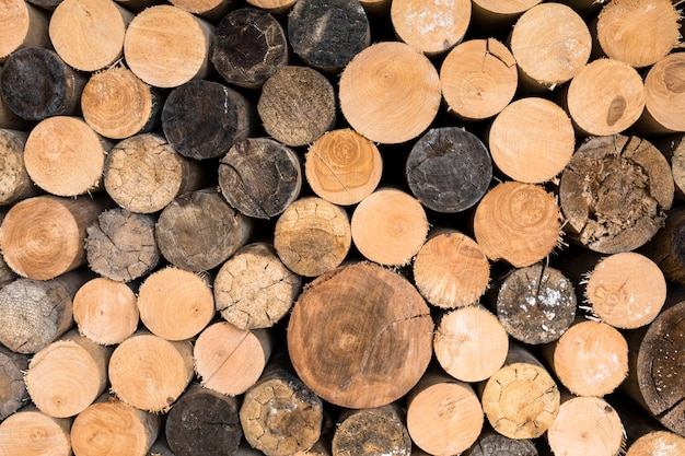 Stos drewna opałowego, osiki i brzozy