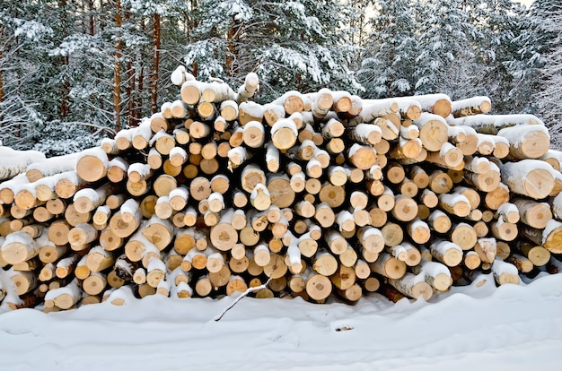 Stos drewna zimą na tle drzew, śniegu, nieba