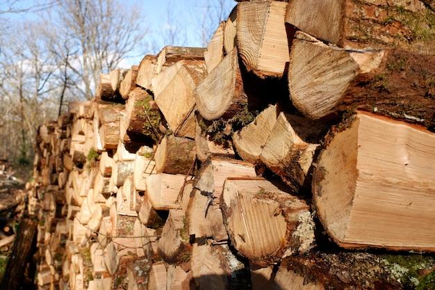 Stos dużo posiekanego drewna opałowego gotowy na mroźną zimę
