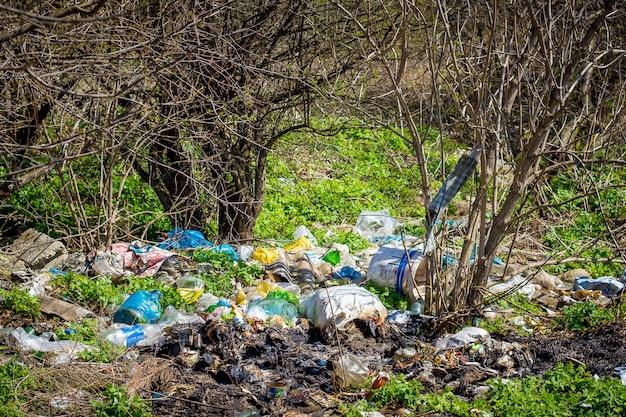 Stos śmieci w lesie pod drzewami. zanieczyszczenie środowiska. problemy ekologii