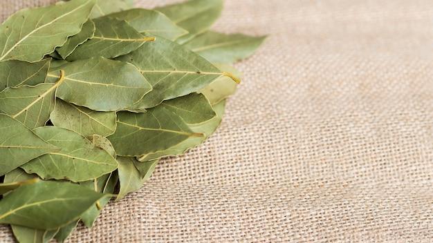 Stos suchych liści laurowych
