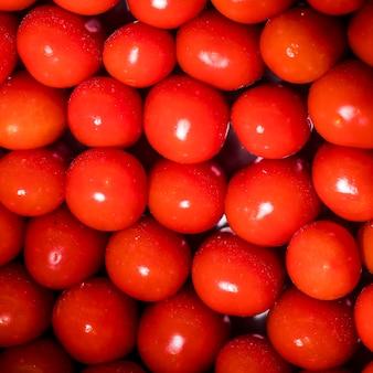 Stos świeżych błyszczących pomidorów