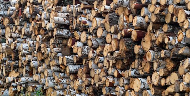 Stos ułożone naturalne przetarte kłody drewniane tło - wylesianie.